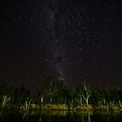 Starlight on the Dawson River  by Peter Doré