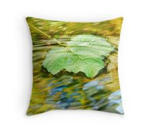 Water ripple Throw Pillow