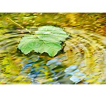 Water ripple Photographic Print