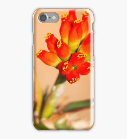 Red Bells iPhone Case/Skin