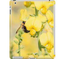 Sweet Pollen iPad Case/Skin