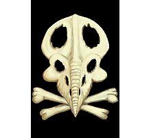 Protoceratops Skull and Crossbones Photographic Print