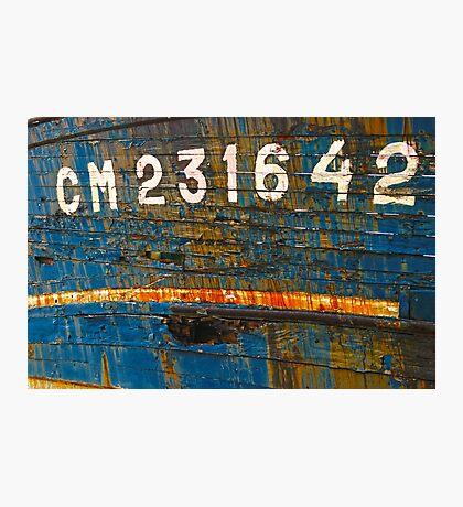 Wooden Shipwrecks Photographic Print