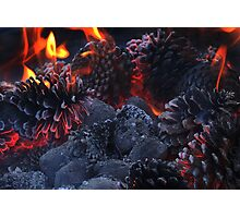 Pine Cone Inferno Photographic Print