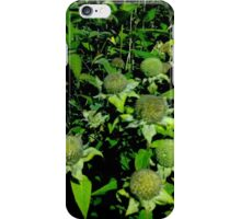 Nighttime Greenery iPhone Case/Skin