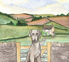 Irish Wolfhound in the Cotswolds by LiseRichardson