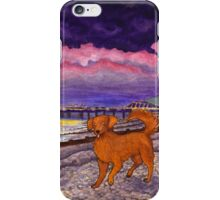 Pier Retriever iPhone Case/Skin
