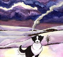 Moonlight Border Collie by LiseRichardson