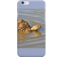 Tortoise Summer Swim - Natural Fun iPhone Case/Skin
