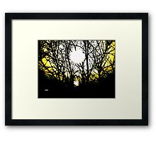 Ascent of the Firefly Framed Print