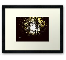 Caught in the Nettles Framed Print