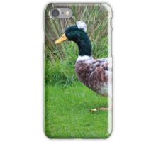 Dallying duck iPhone Case/Skin