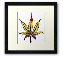 Cannabis leaf  Framed Print