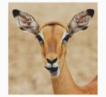 Impala Fun - Wildlife Humor from Africa.  Baby Tee