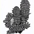 Muttaburrasaurus by irimali