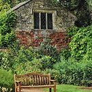 Garden Bench by Vicki Field