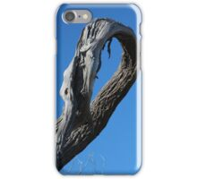 Natures Abstract..... iPhone Case/Skin