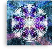 flower of life 10-16c Canvas Print