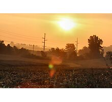 Sunrise and Soy Beans Photographic Print