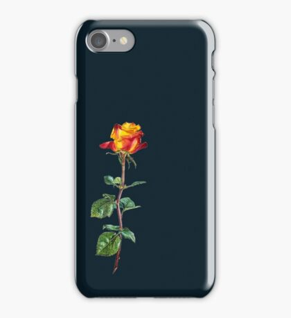 red rose on a long stalk iPhone Case/Skin