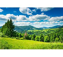 meadow in mountains Photographic Print