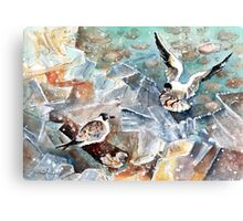 Breaking The Ice On Lake Constance Canvas Print