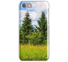 meadow with in the mountains iPhone Case/Skin