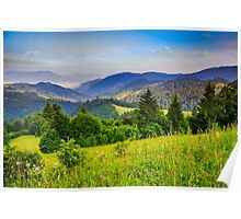 pine trees near valley in mountains and autumn forest on hillside under blue sky with clouds Poster