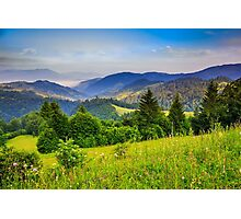pine trees near valley in mountains and autumn forest on hillside under blue sky with clouds Photographic Print