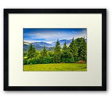 row of trees in mountains Framed Print