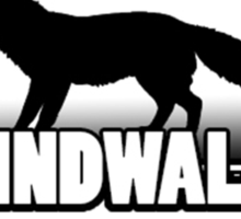 WindWalk Games Official Developer Shirt Sticker