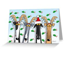 Greyt Antlers Greeting Card