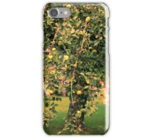 Apple Tree In A Small Town iPhone Case/Skin