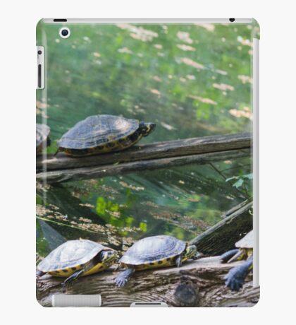 tortoise on lake iPad Case/Skin