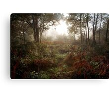 Autumn Mornings Canvas Print