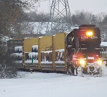 Illinois Central Locomotive 6204  by Timothy  Ruf