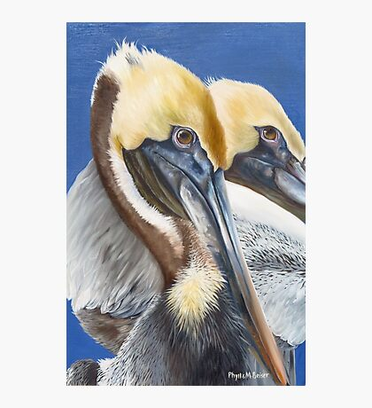 A Portrait Of Two Pelicans Photographic Print