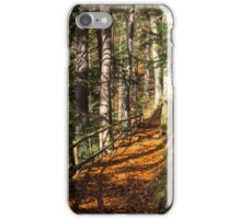 morning walks in autumn forest iPhone Case/Skin