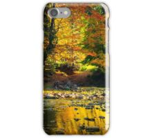 river flows by rocky shore near the autumn mountain forest iPhone Case/Skin