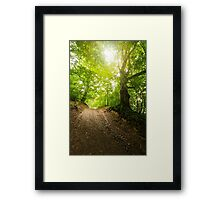 path in to deep ancient forest Framed Print