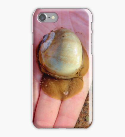 The Northern Moon Snail iPhone Case/Skin