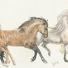 The Gallop by BarbBarcikKeith
