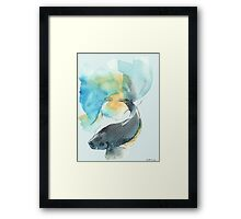 Blue and Yellow Beta Fish Framed Print
