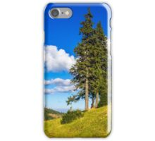 Conifer forest in classic Carpathian mountain Autumn Landscape iPhone Case/Skin