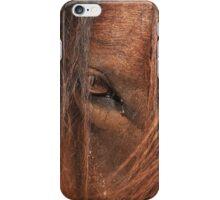 Brilliant Wild Bay iPhone Case/Skin