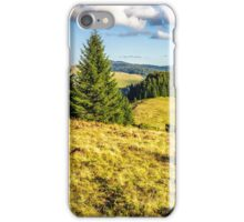 coniferous forest on a mountain hillside iPhone Case/Skin