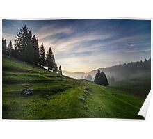 fir trees on meadow between hillsides in fog before sunrise Poster