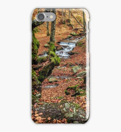 Mountain stream in autumn forest iPhone Case/Skin