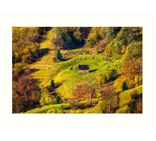 flock of sheep on the meadow near  forest in mountains Art Print