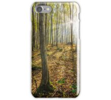 trees in foggy autumn forest iPhone Case/Skin